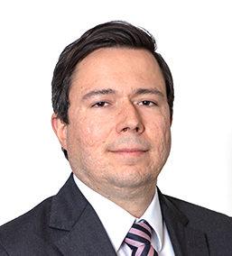Luis Claudio Nagalli Guedes De Camargo